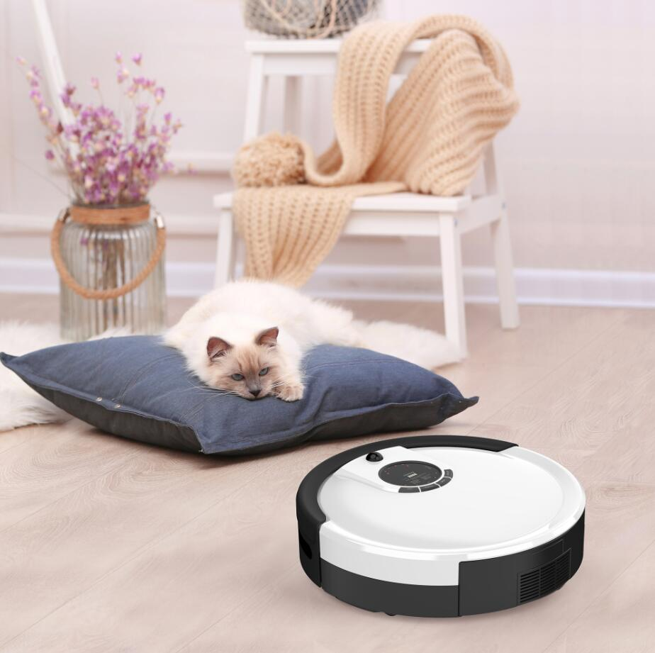 Who is Best to Help with Household Chores? - A Reliable Advanced Robot Vacuum